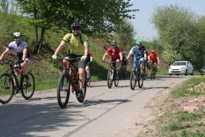 Radfahrer in den Weinbergen