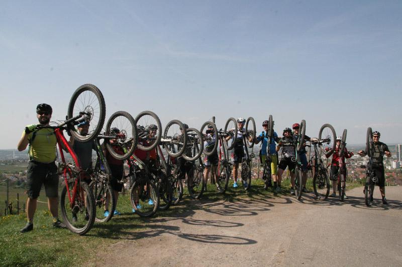 Gruppenbild von Radfahrern in den Weinbergen