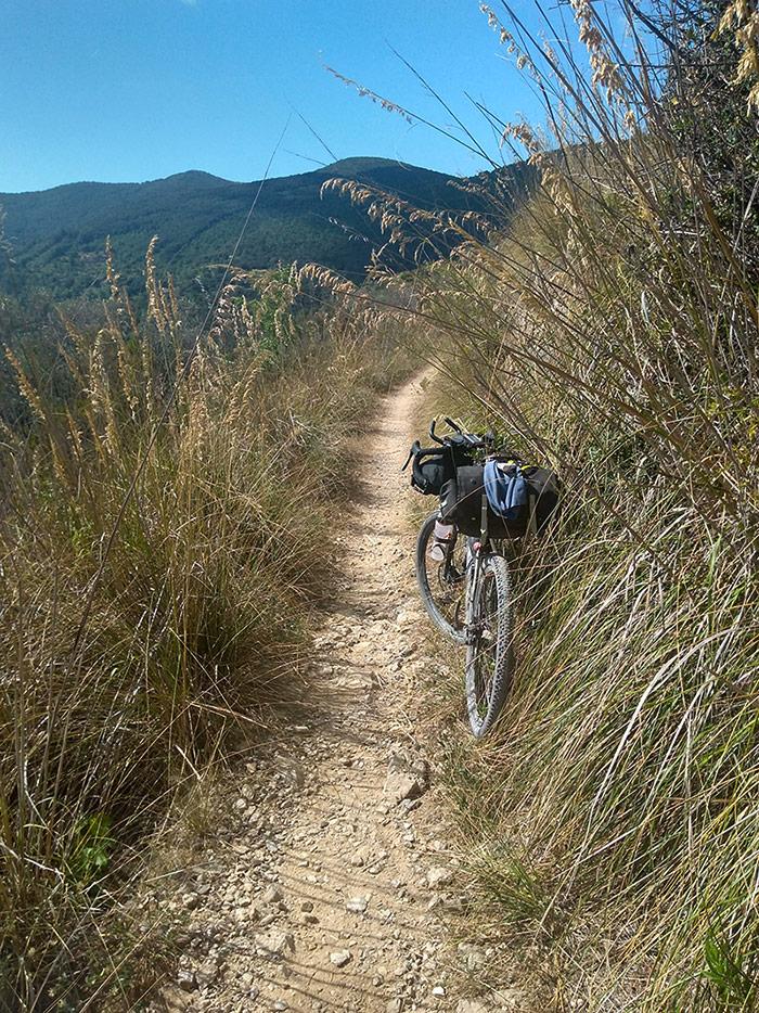 Gravelbike auf Tuscany Trail mit den PRO-Fahrradtaschen
